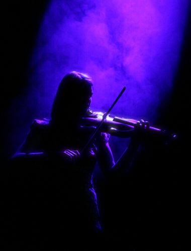 Oi Va Voi's violinist