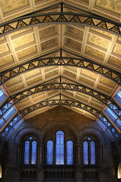 Ceiling of Natural History Museum's main hall