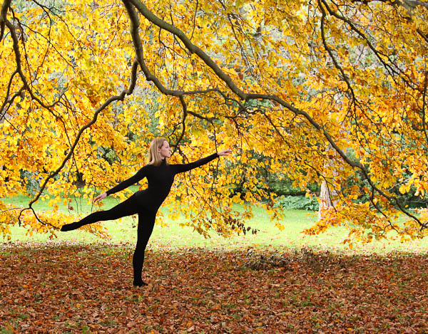 Cambridge Ballerina Project - Autumn Leaves