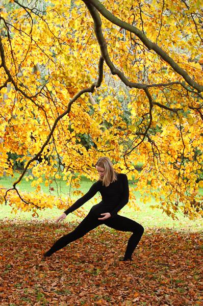 Cambridge Ballerina Project - Autumn Leaves