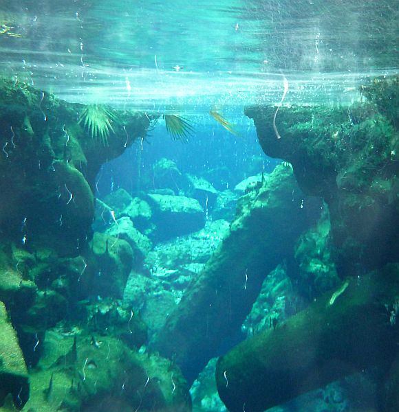 Underwater chasm in Cleopatra's Pool